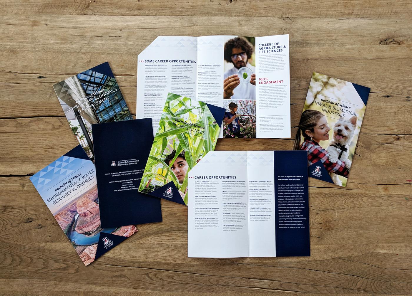 smart pop creative university of arizona recruitment brochures