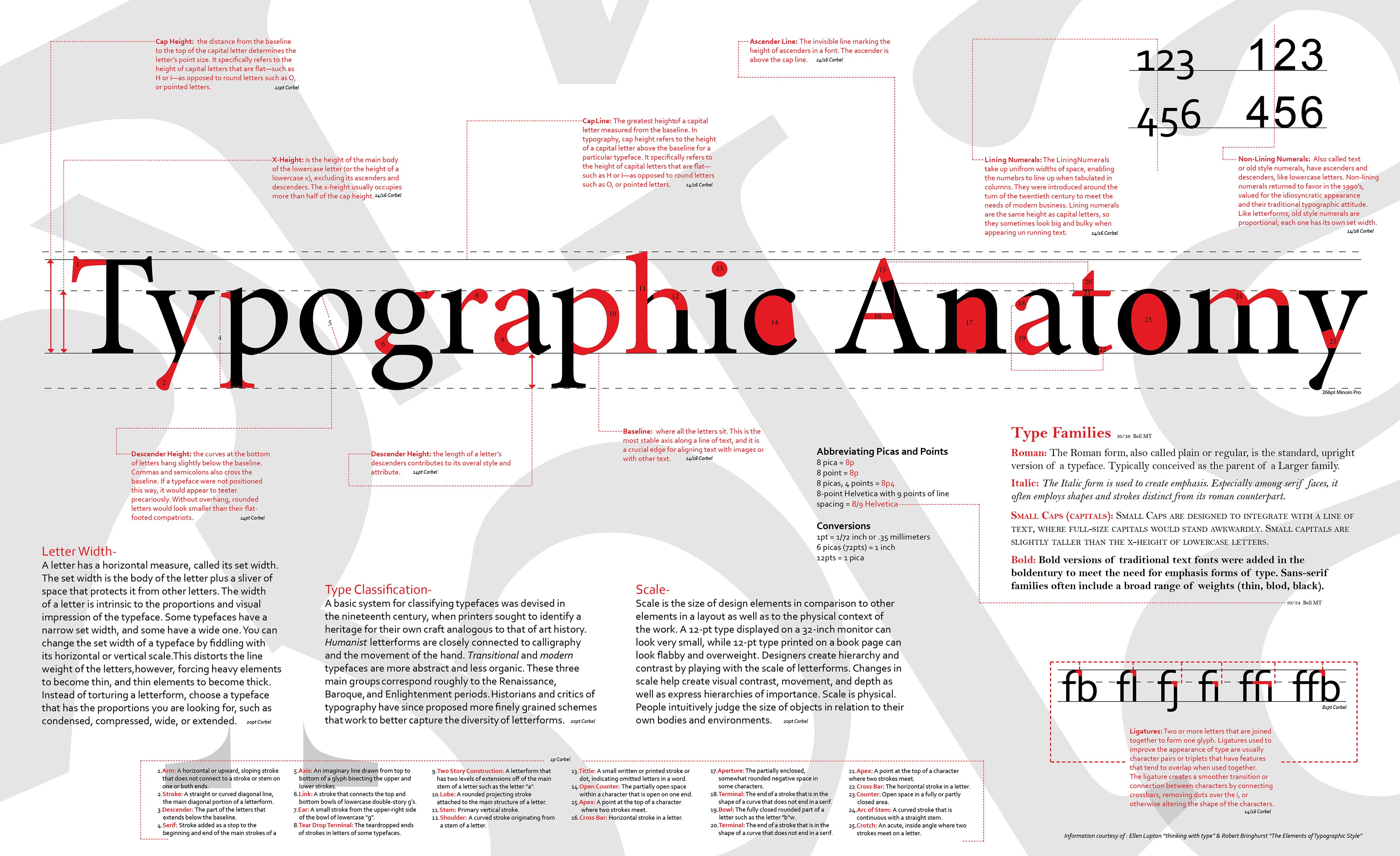 Typographic Anatomy Poster Information Courtesy Of Ellen Luptin In Thinking With Type And Robert Bringhurst The Elements Style