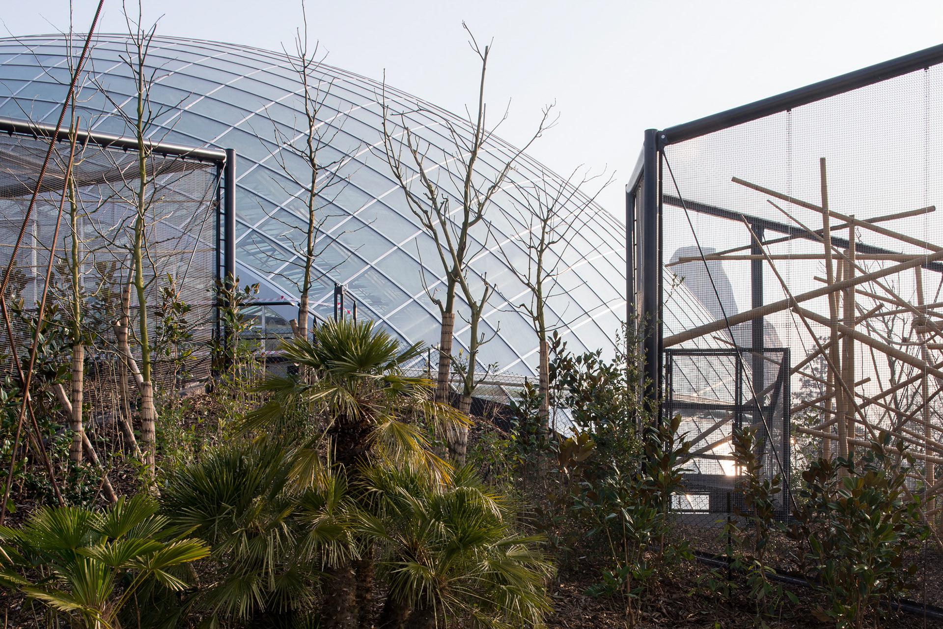Martin argyroglo photographe nouveau parc zoologique de for Parc zoologique 78