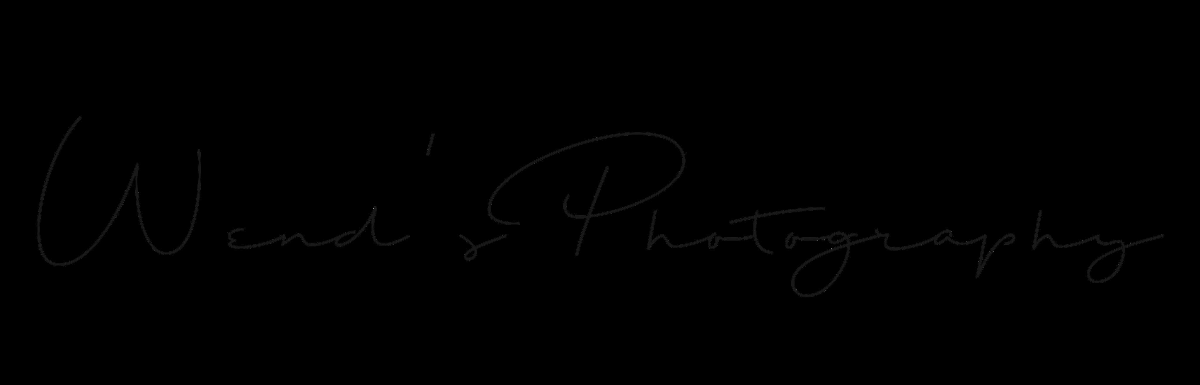 Wendy McDonnell website logo