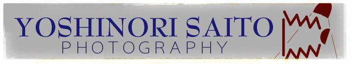 Yoshinori Saito Photography