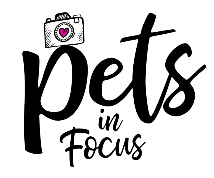 Pets In Focus, LLC