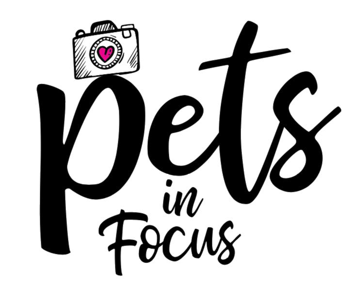 Pets In Focus, LLC