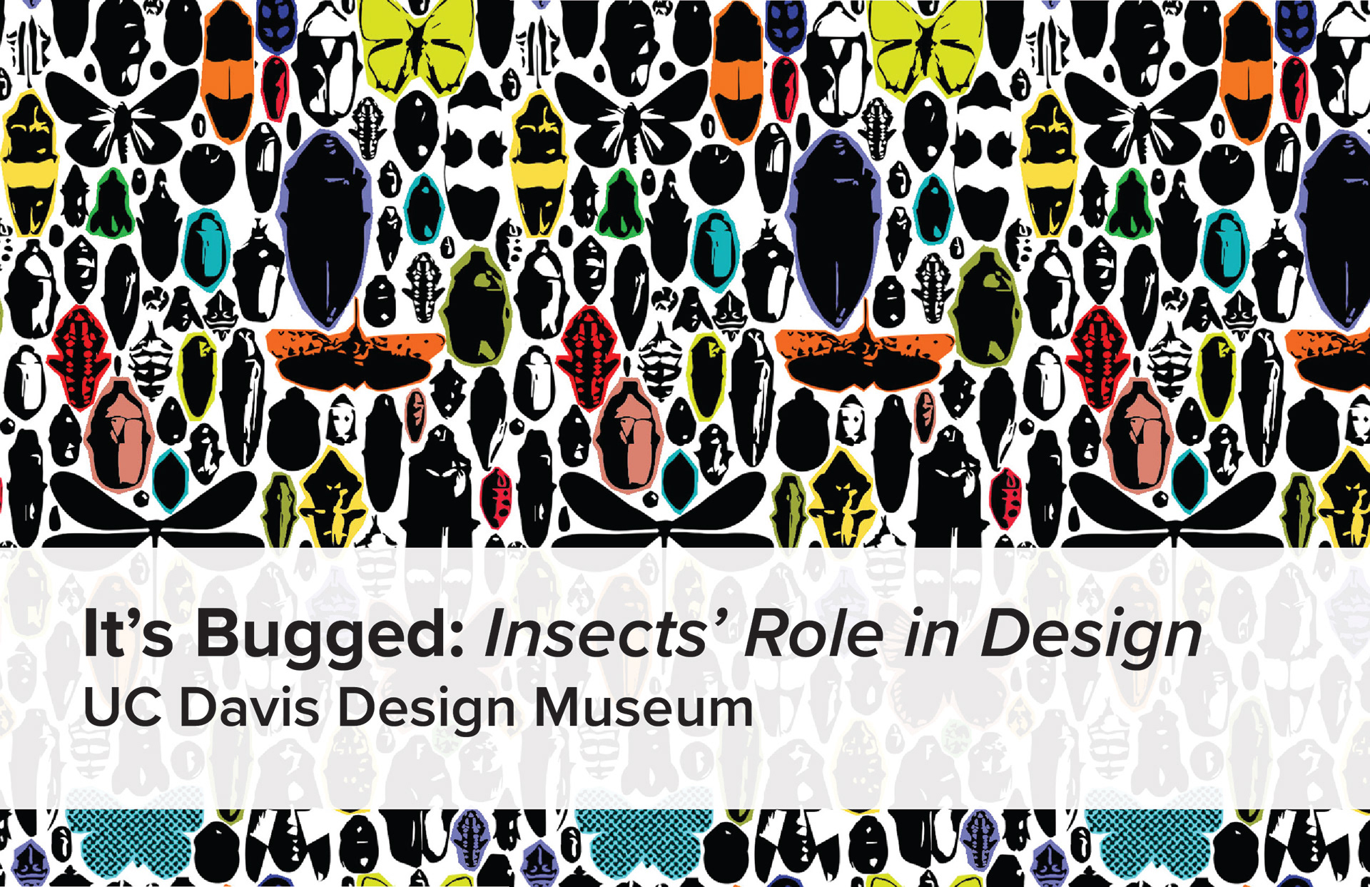 Bronte Blanco It s Bugged Insects Role in Design