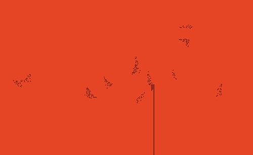 Rayita