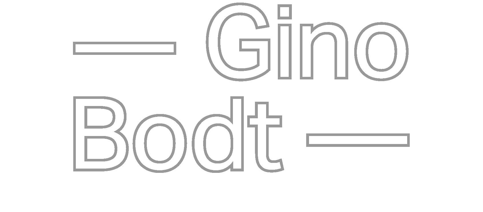 Gino Bodt
