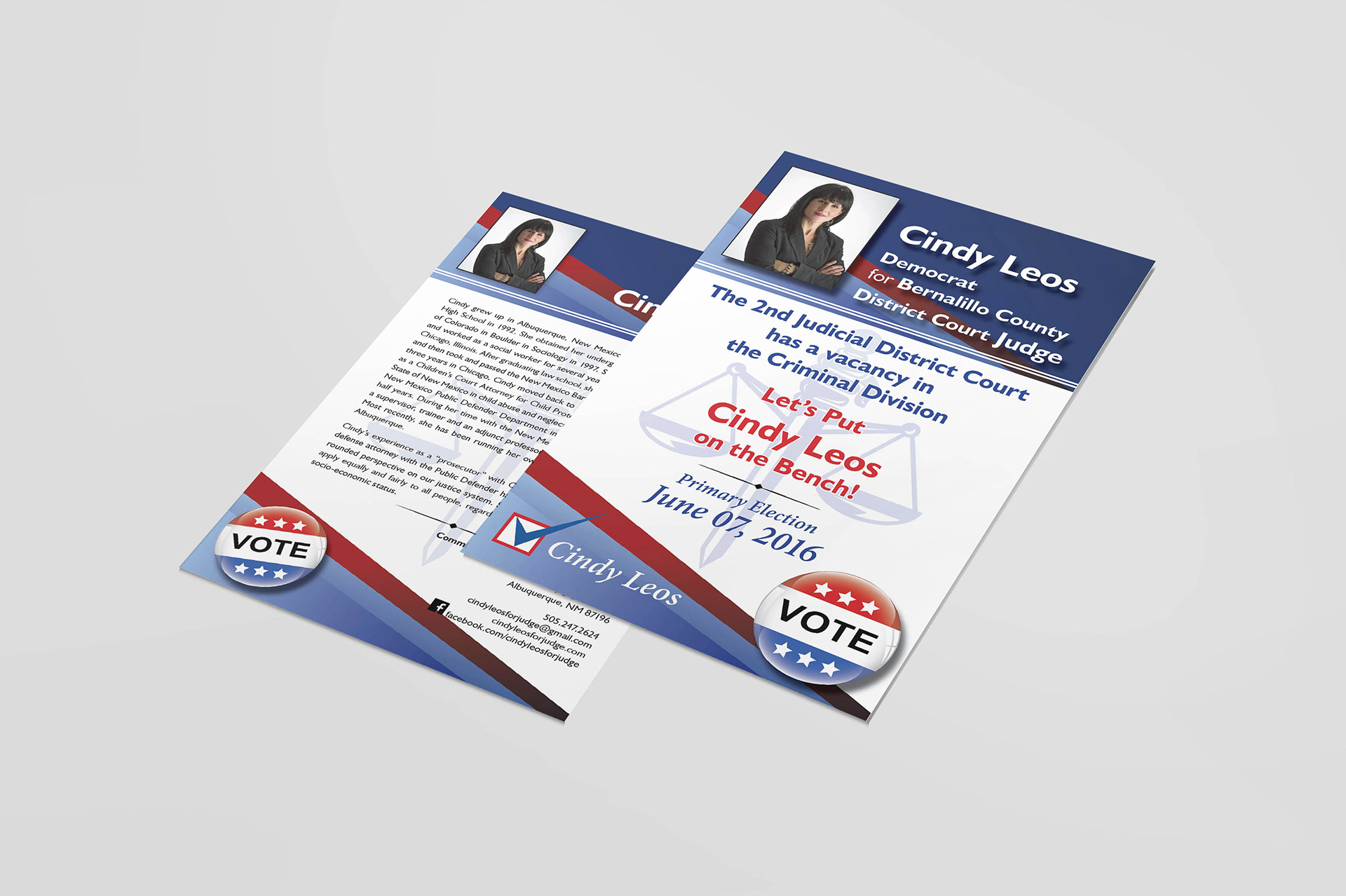 Leslie Reilly - Campaign Materials for a Local Candidate