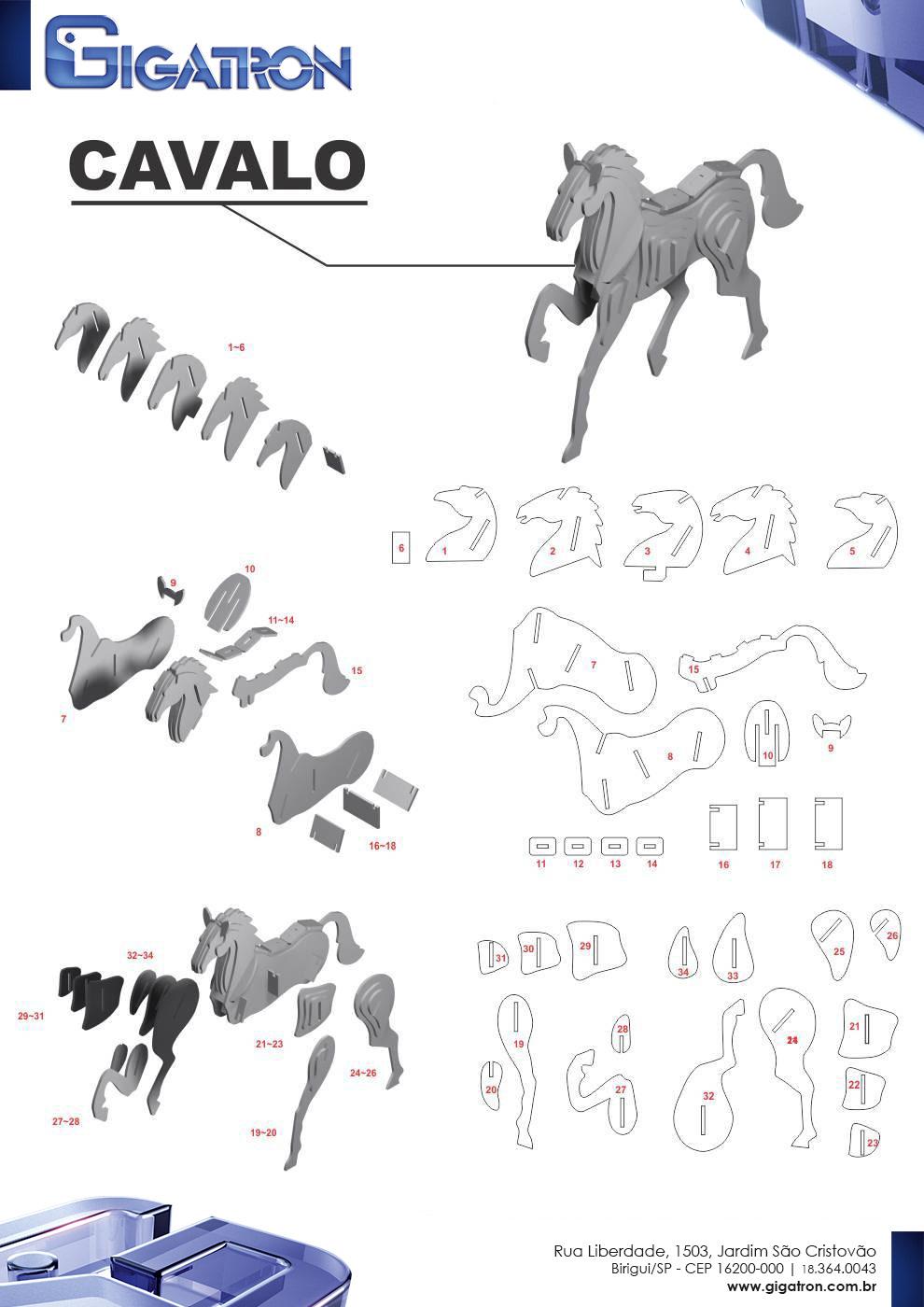 Renato Degiovani   20D Puzzle Creation