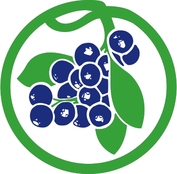 Royal Blueberries