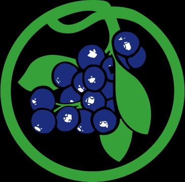 Royal Blueberries