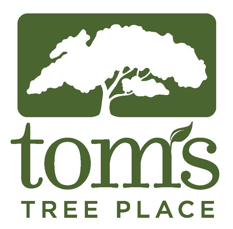 Tom's Tree Place