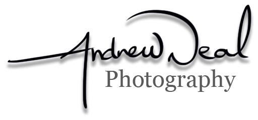 Andrew Neal