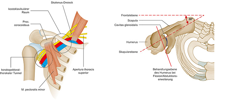 Stefan Dangl - Physiotherapie Schulter