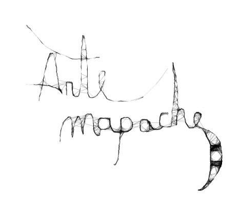 Arte mapache