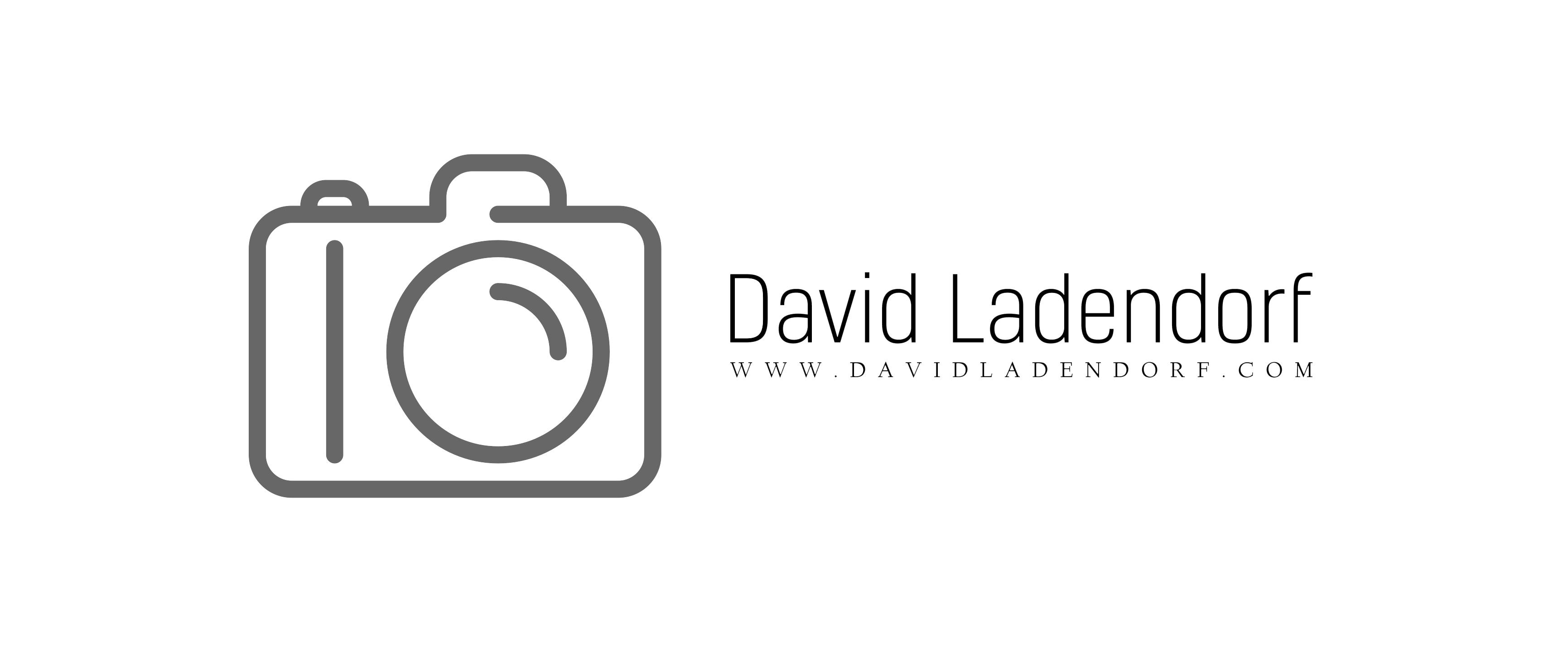 David ladendorf