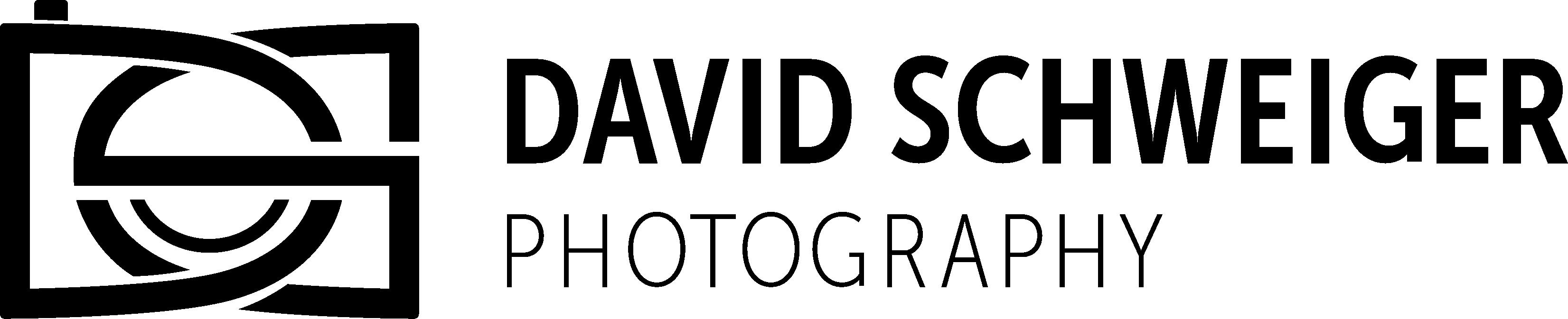 David Schweiger