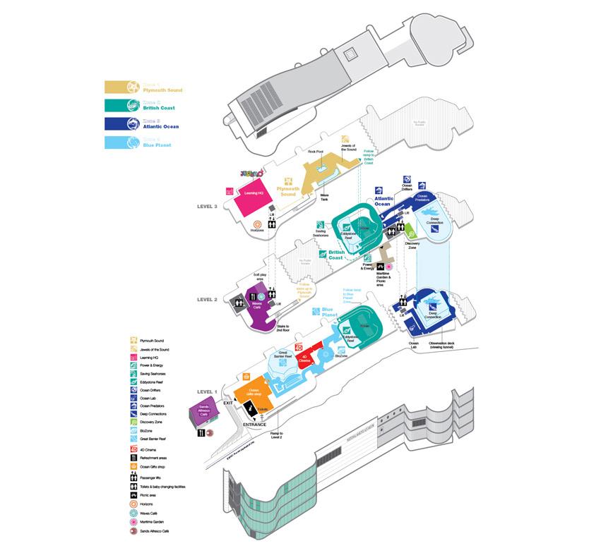 Infographic services infographic designer illustrator for Denver art museum concept