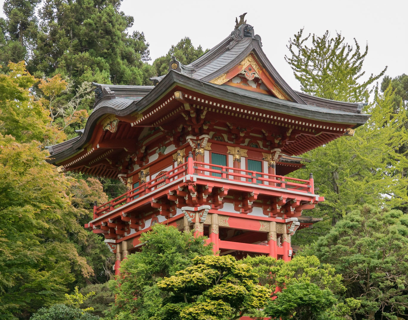 Juan Matorras Díaz-Caneja - Japanese Tea Garden, SF