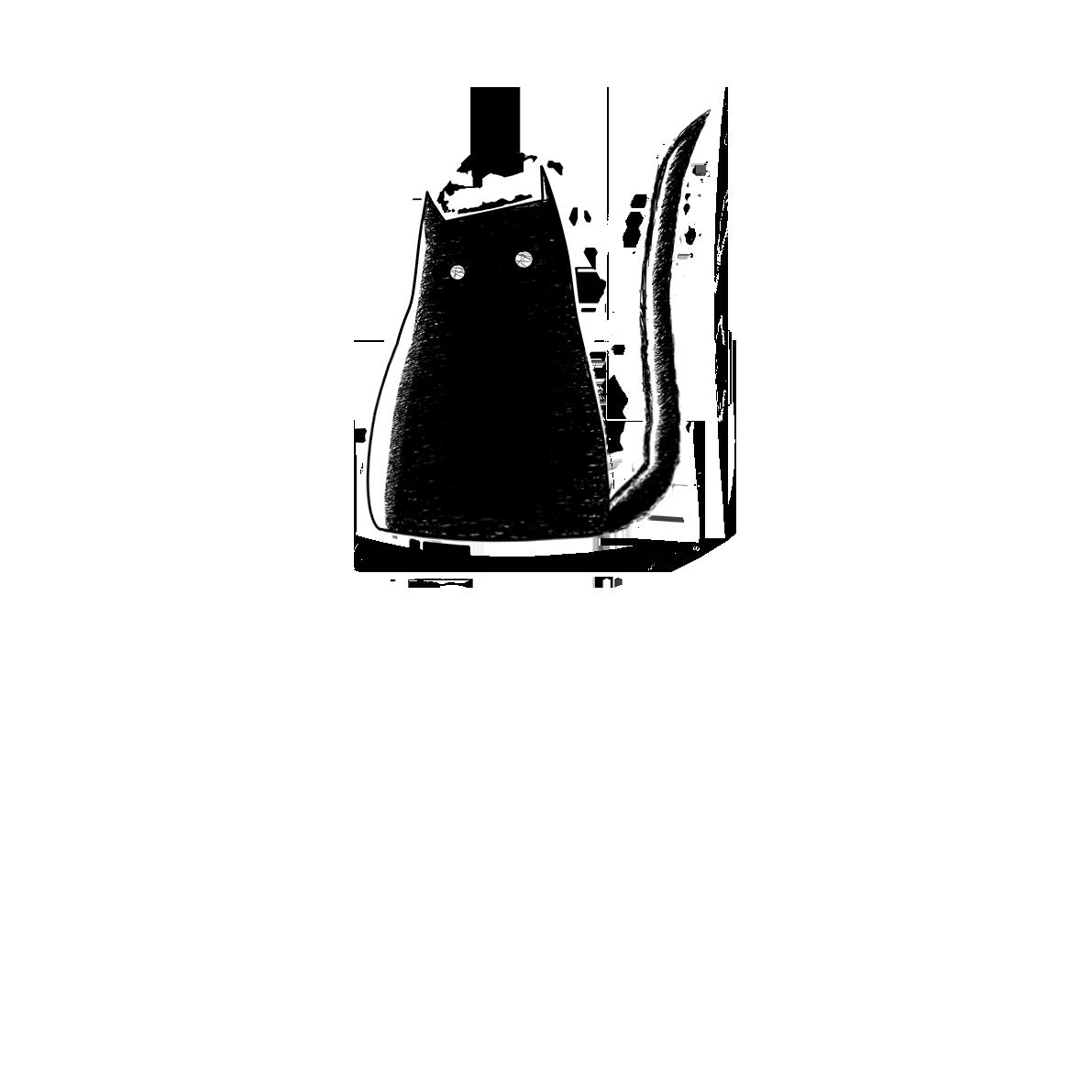 THE BLAQ CAT