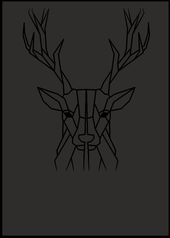 Timo Ruberg