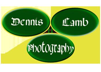 Dennis Lamb