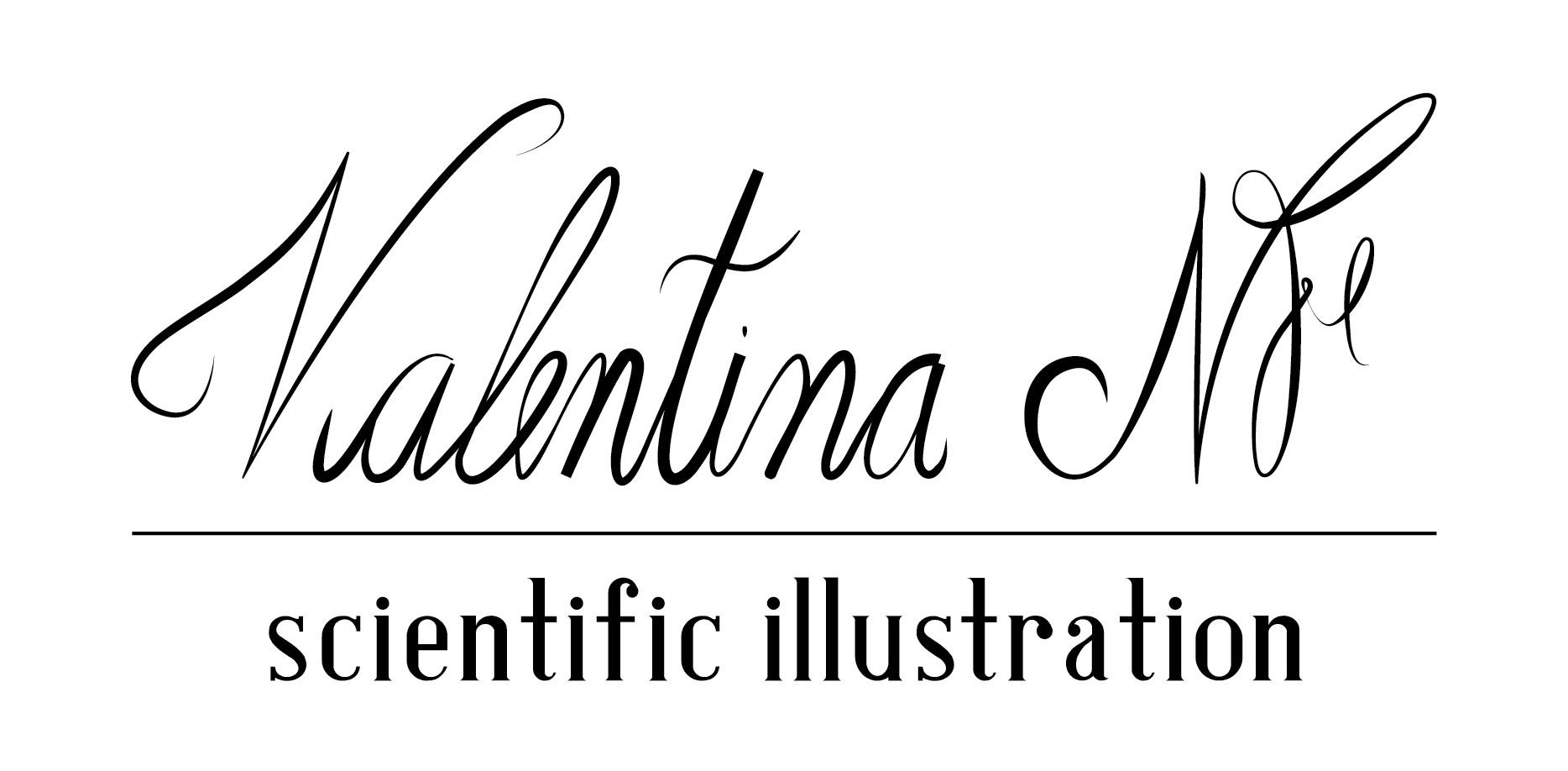 Valentina Nieto Fernandez