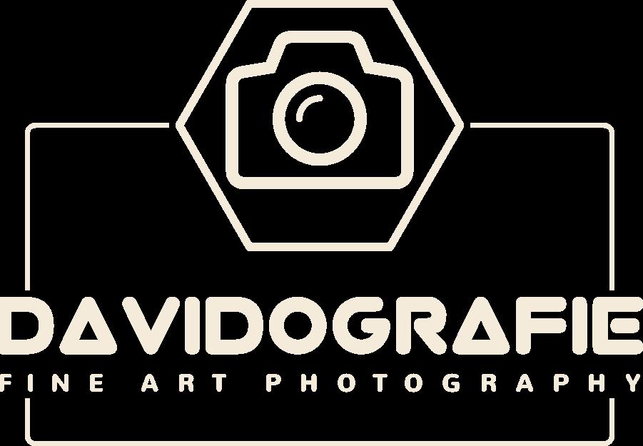 Davidografie