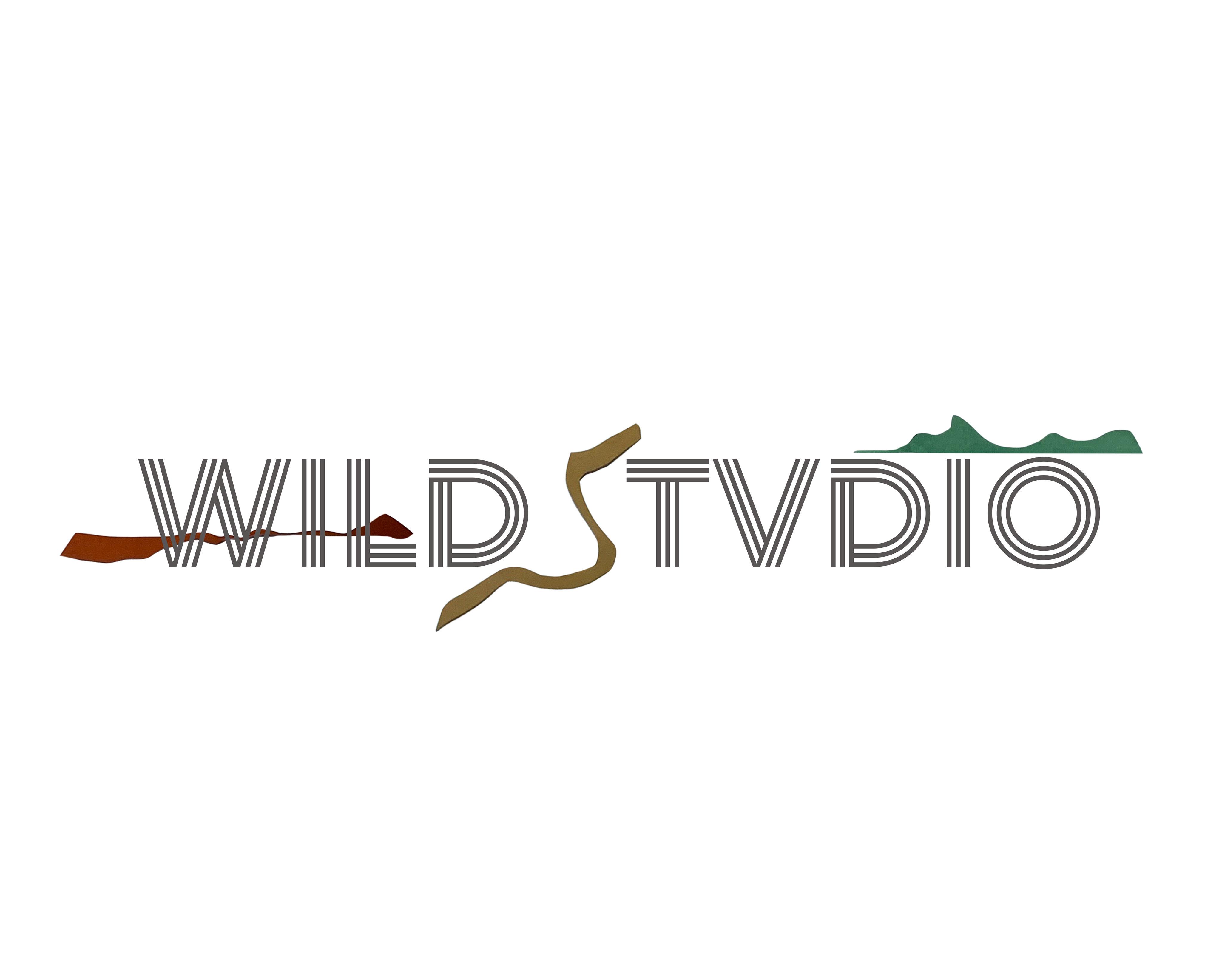 WILDSTVDIO
