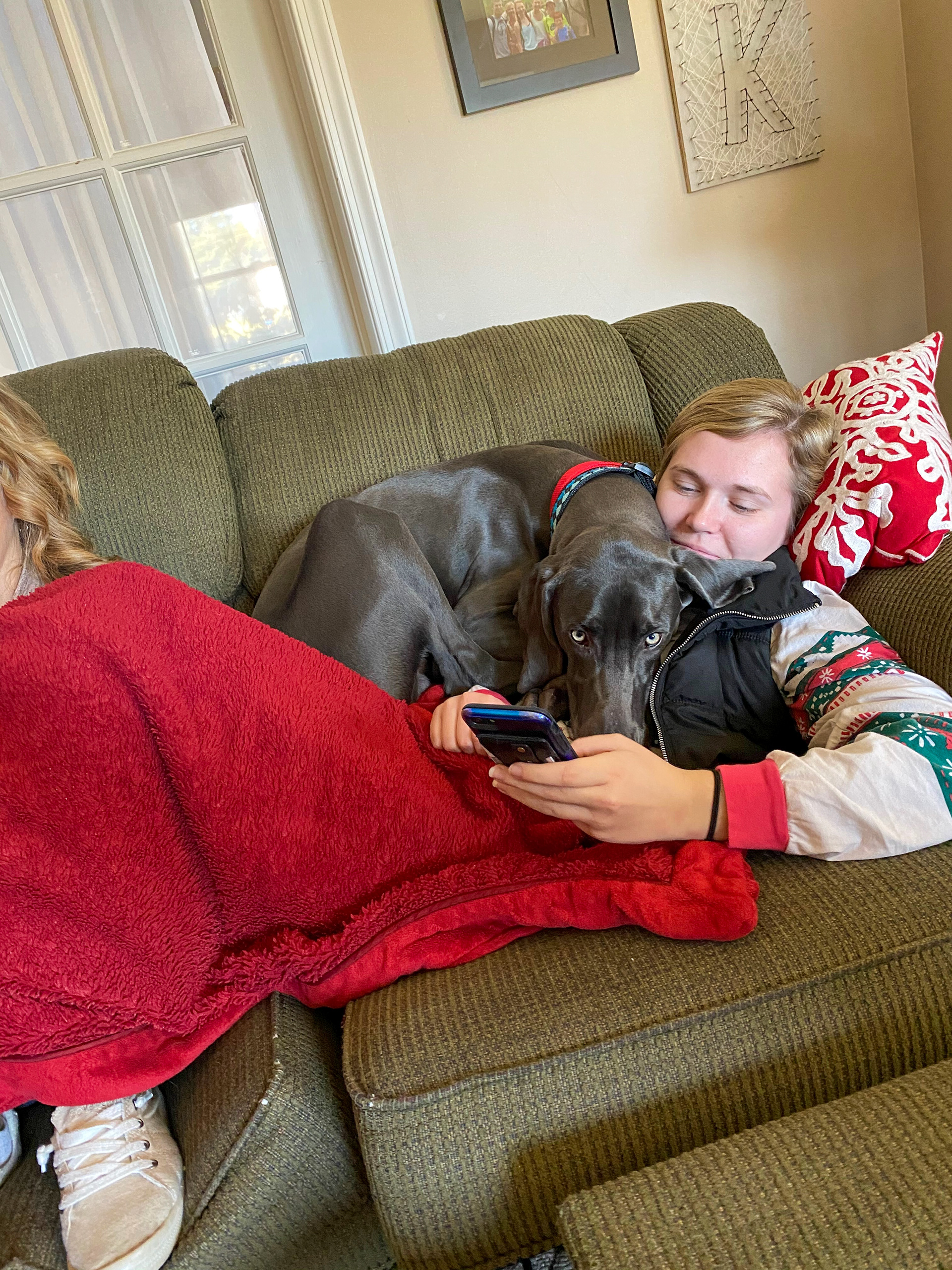 Maggie Kaliszak and dog Guinness lounging on the couch on March 26th, 2020. Maggie Kaliszak  |  New Freedom, Pennsylvania.