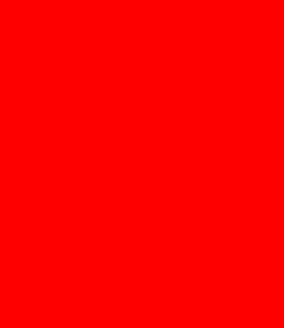 Rogério Puhl
